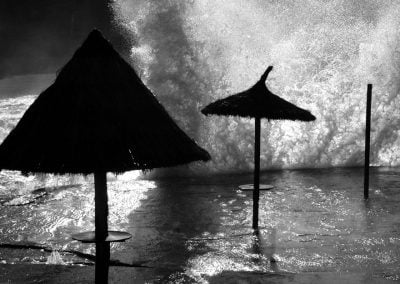 Parasols © NICHOLSON CREATIVE