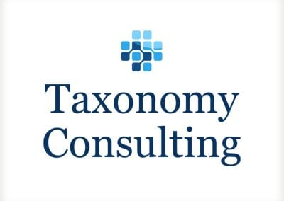 Taxonomy Consulting